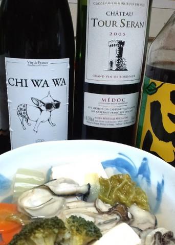 チワワと牡蠣鍋.jpg