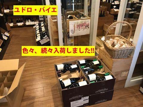 ユドロ・バイエ色々入荷.jpg