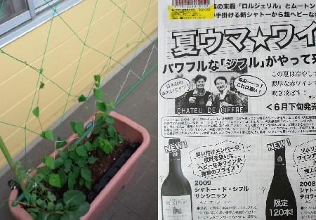 夏ウマワイン.jpg