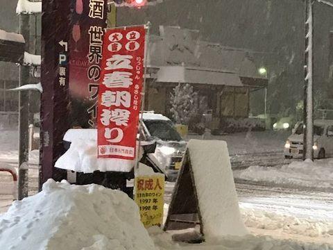 立春朝搾りのぼり 雪の中.jpg