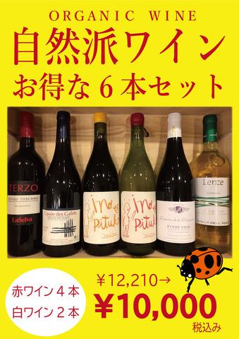 自然派ワインセット2021.2.jpg