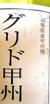 koshu2010_1.jpg